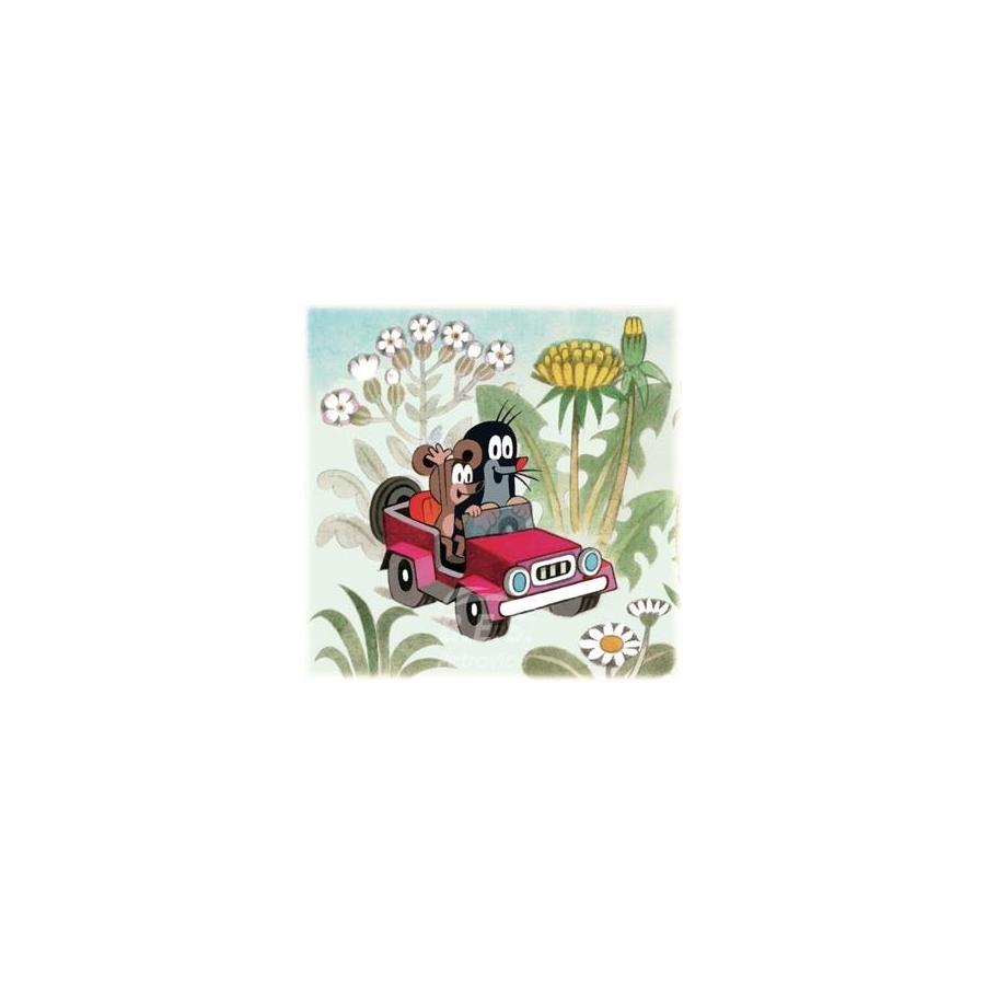 kissen kopfkissen motiv der kleine maulwurf mit auto. Black Bedroom Furniture Sets. Home Design Ideas